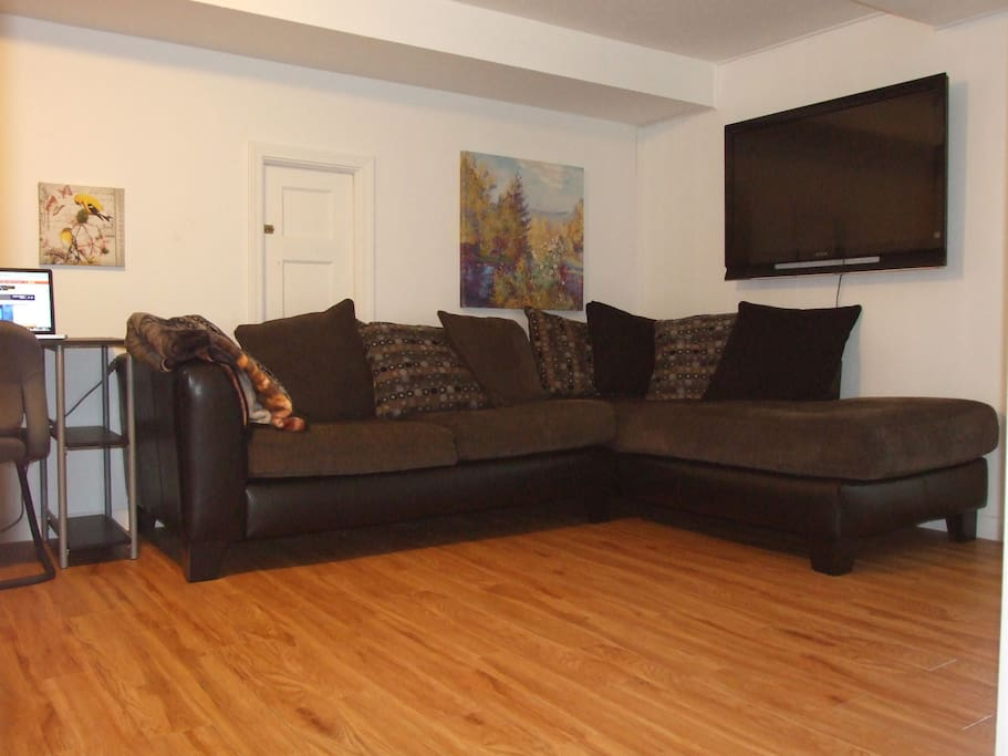 Sectional with large TV and Roku box