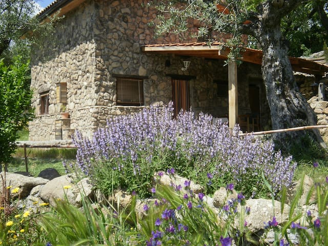 Charming rural guest house for nature lovers - Jarandilla de la Vera - Huis