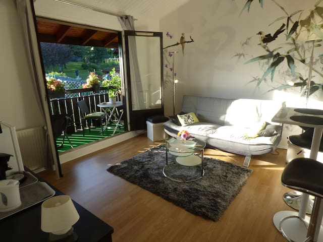 La suite du Lac Léman, PROMO massages - Lugrin - House