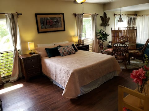 Beautiful Princeville apartment with full kitchen