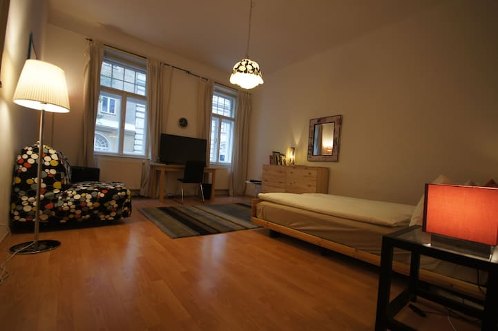Large room on walking distance to old city - Vienna - Pis