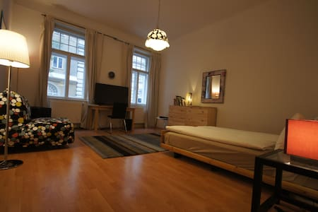Large room on walking distance to old city - Vienna