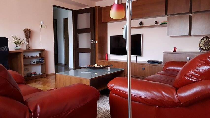 Cozy apartament for UNTOLDfestival - Cluj-Napoca - Pis