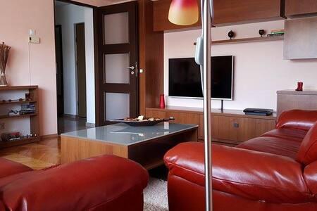 Cozy apartament for UNTOLDfestival - Cluj-Napoca - Apartment