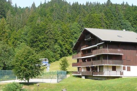 Large studio in a mountain chalet - Bellevaux