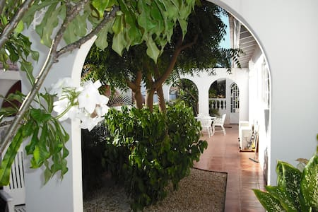 Cozy caribbean couples retreat - Noord - Apartmen