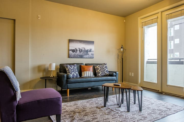 Upscale 1BR Close to UNT Health Science Center