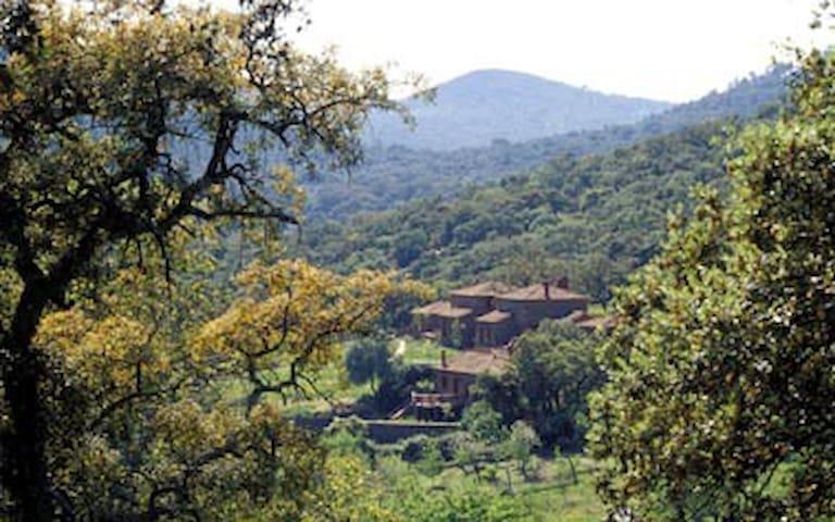 Casa Cigüeña - Molino río Alájar - Alájar - Hotel ekologiczny