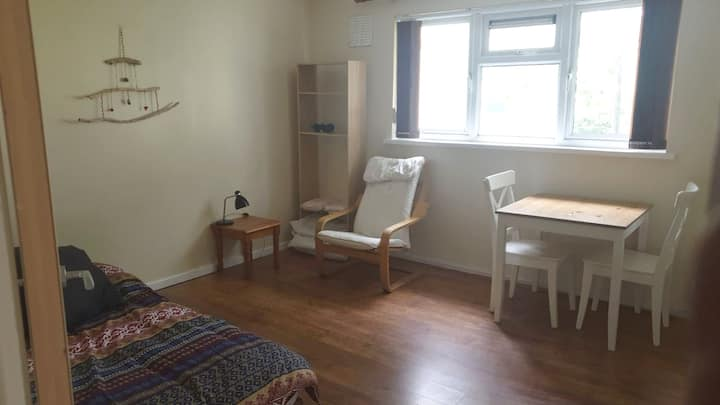 Cute, private studio close to Mumbles