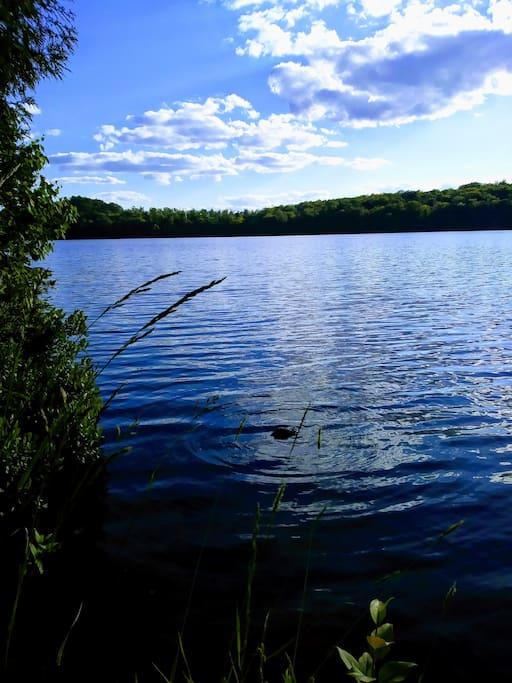 Beautiful Newark pond