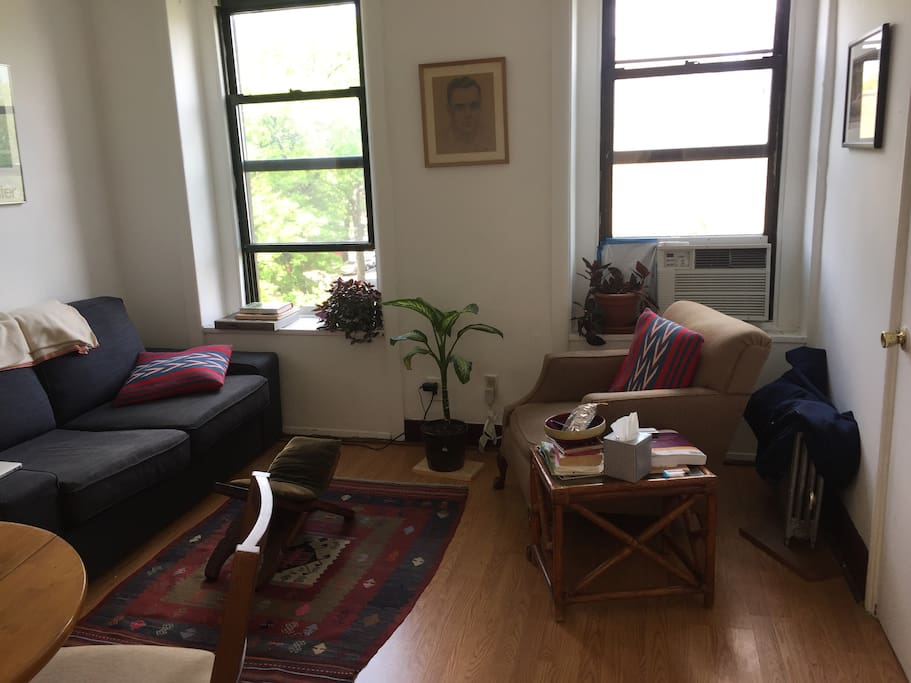 Spacious And Sunny 2 Bedroom In Brooklyn Apartments For