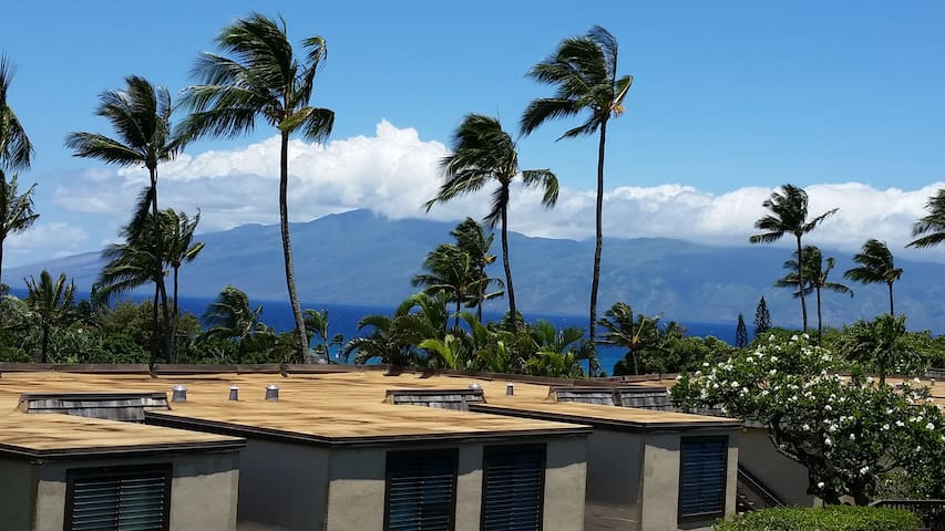 Maui Hawaii Oceanview Studio Napili Ridge