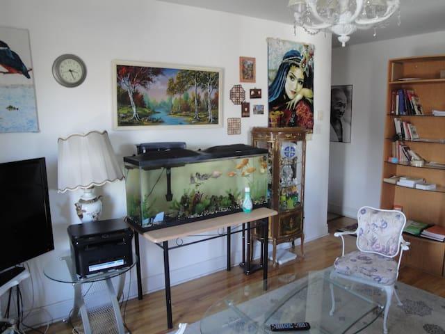 Appartement tres confort à Montréal - Mont-Royal - Apartment