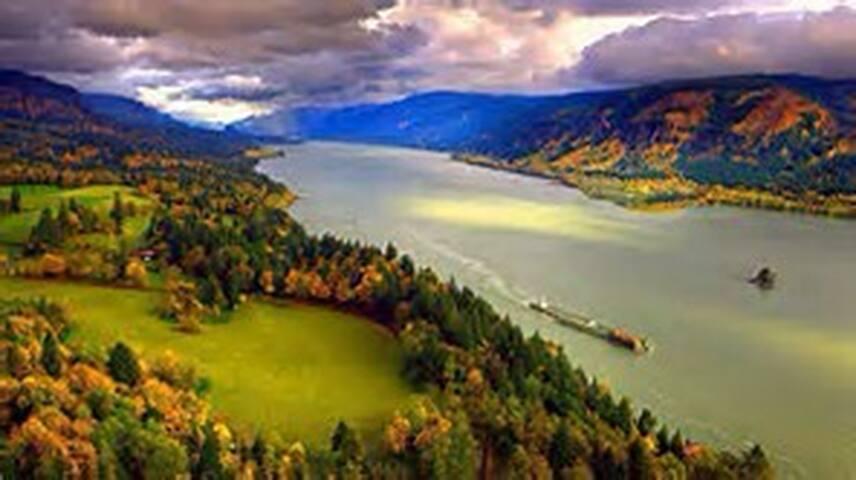 Cedar Sanctuary Retreat on Stream