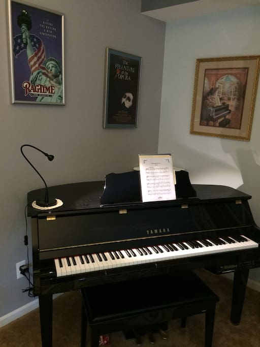 Music corner of the living room. Yamaha digital baby grand piano with Disklavier player piano system.