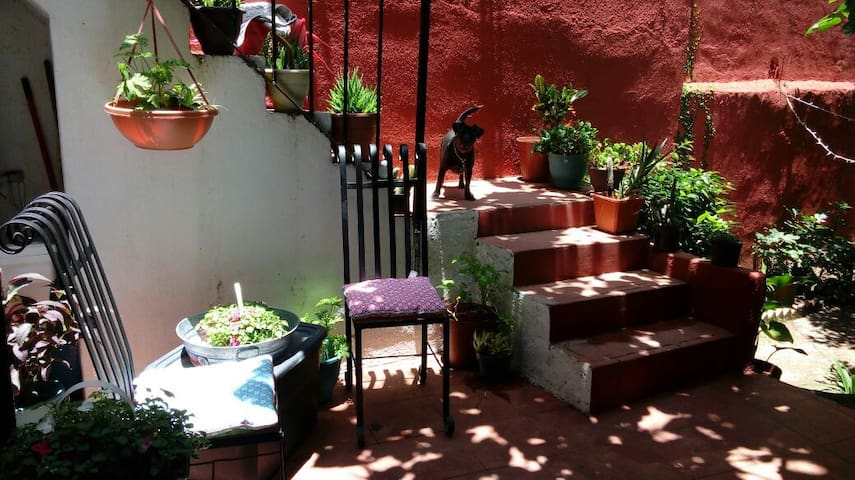 The Secret Garden (private studio/centro)素晴らしい場所 - Guanajuato - Apartamento