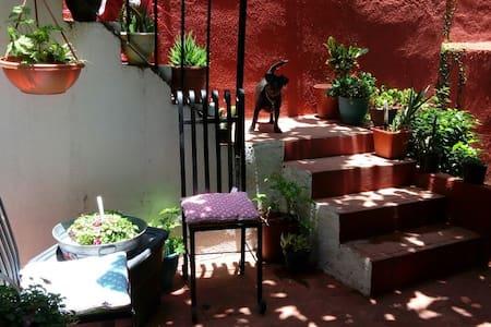 The Secret Garden (private studio/centro)素晴らしい場所 - Guanajuato - Apartamento