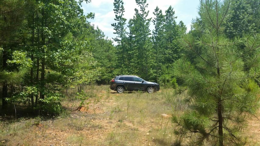 50 acres of Camping, Hunting or... - Crawfordville - Autocaravana