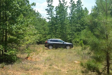 50 acres of Camping, Hunting or... - Crawfordville - Camper/RV