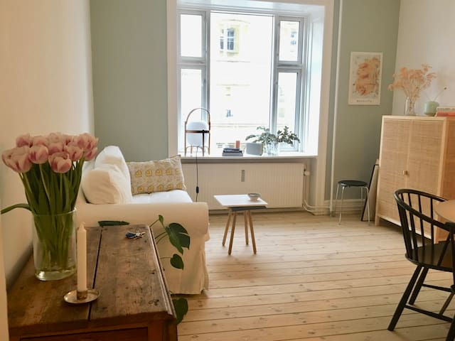 Charming  apartment in the heart of Nørrebro