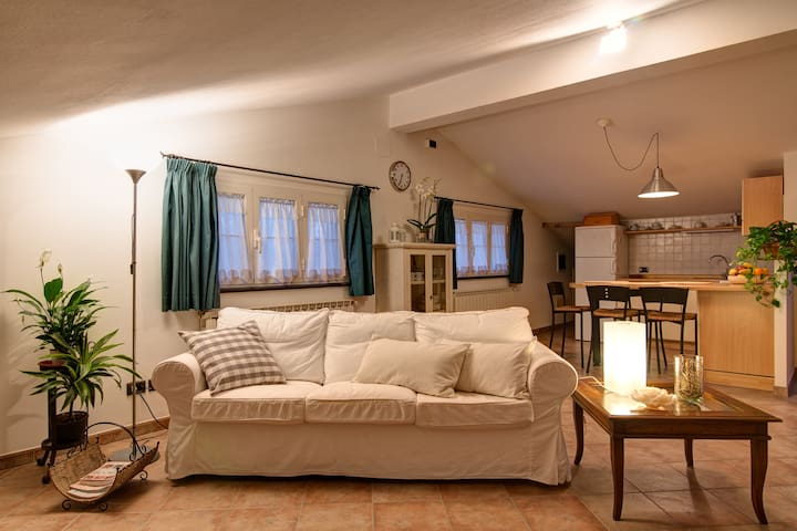 Lovely Apartment near the beach - Forte dei Marmi - อพาร์ทเมนท์