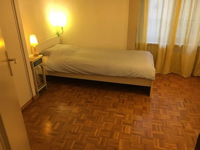 Calm room near the UN and the station - Genebra - Apartamento