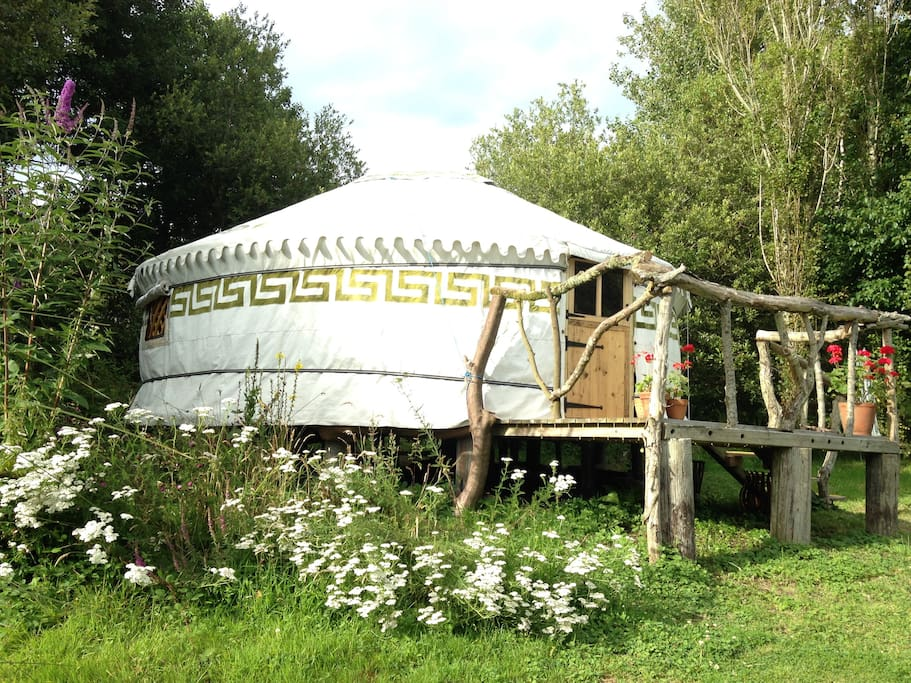 Yurt is surrounded by trees and wild flowers