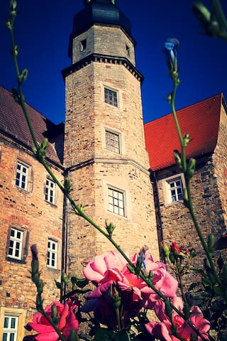 Your own room in a castle! - Salzatal - Hrad