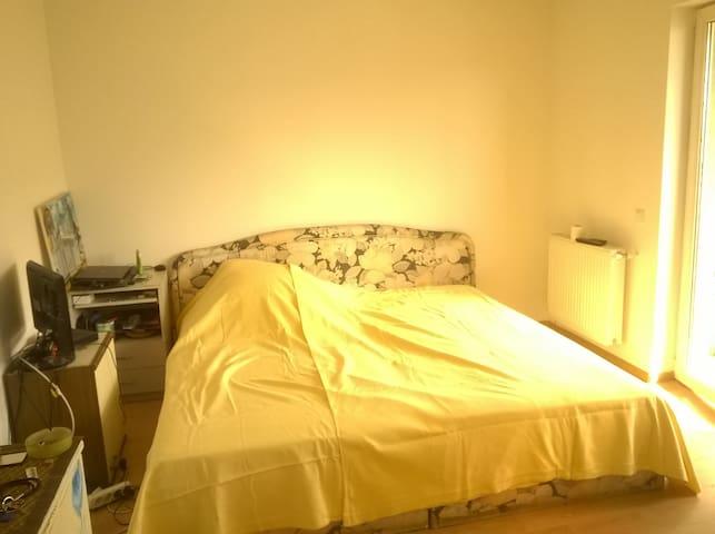 1 bedroom apartment in Floresti - Florești