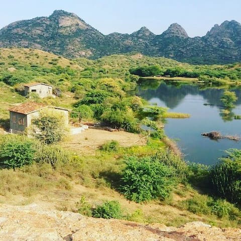 SHAMBHALA @Land of Leopards & Shepherds@Jawai 1