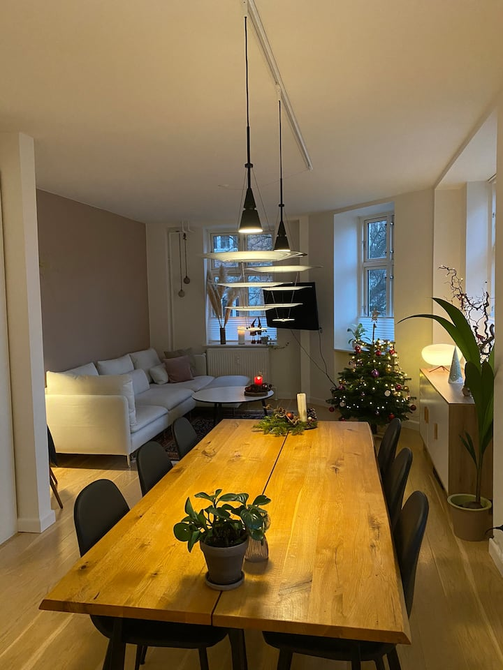 Big apartment in the center of Aarhus
