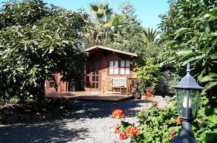 Cozy Cottage in Avocado Plantation - La Orotava - Cabaña