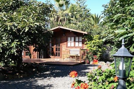 Cozy Cottage in Avocado Plantation - La Orotava