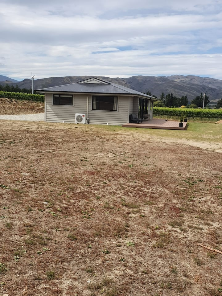New build with vineyard views