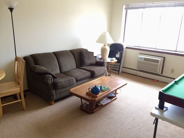 Quiet room near UW hospital/campus - Madison - Lägenhet