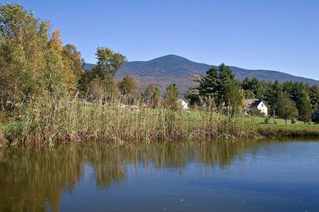 View of Mt. Abraham from our spring-fed pond