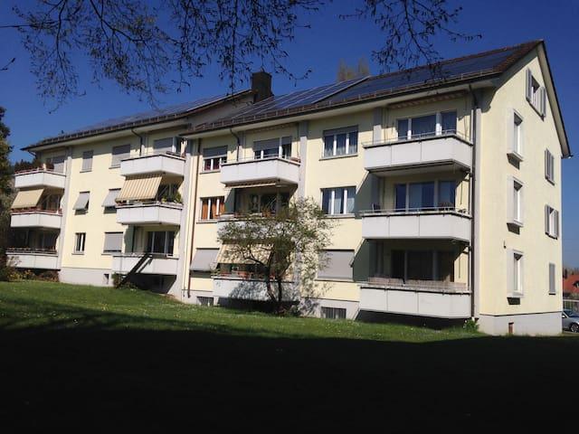 kleine Dachwohnung mit Charme - Winterthur - Wohnung
