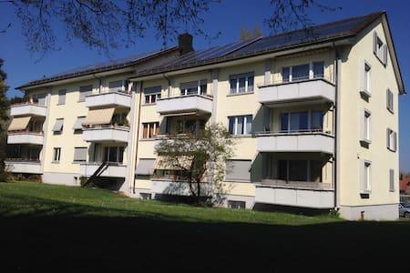 kleine Dachwohnung mit Charme - 温特图尔(Winterthur) - 公寓