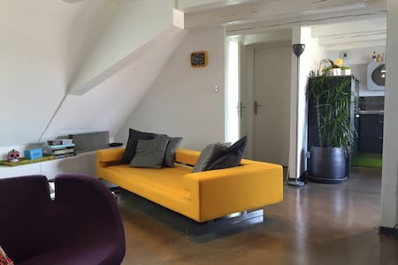 Duplex vignoble Strasbourg/Obernai - Wolxheim