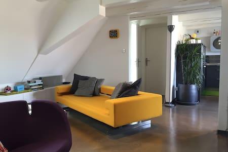 Duplex vignoble Strasbourg/Obernai - Wolxheim - Pis