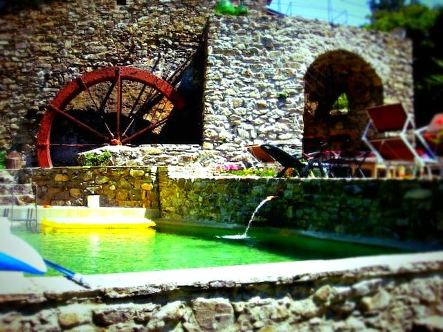 OLD OLIVE MILL - UNIQUE haven - Pigna - Villa