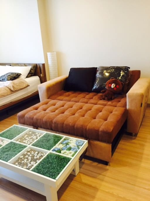 extended sofabed