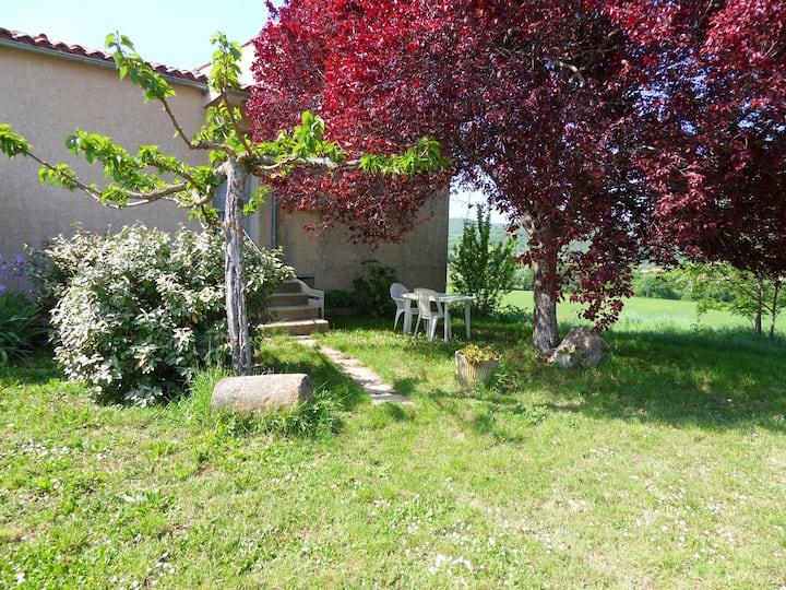 lavandin,gite rural au pied du Luberon
