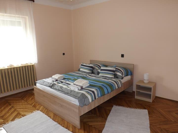 Fully separated house in Sárvár