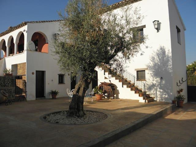 Appartement 3 dans ferme andalouse - Velez malaga - Byt