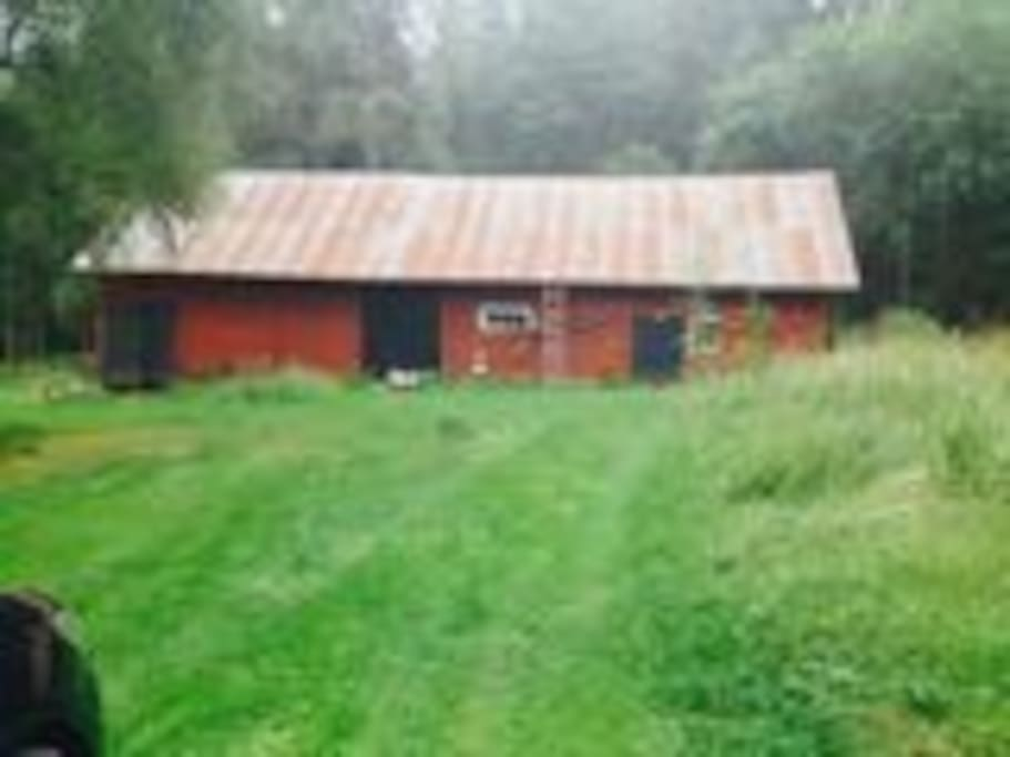 Cow barn (no longer in use)