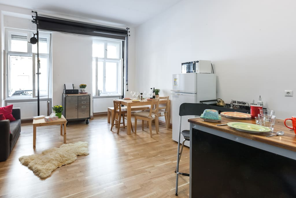 Studio, livingroom including a sleeping sofa, fully equipped kitchen