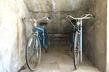 We have bikes free to use, as well as helmets.