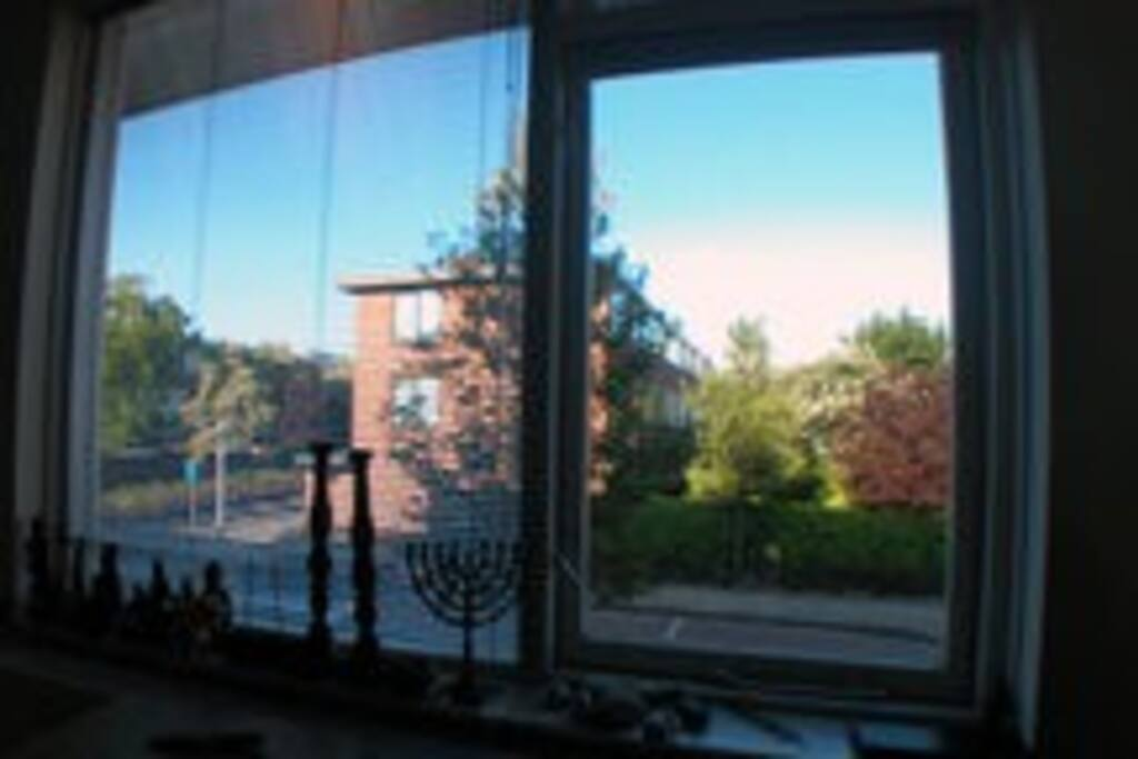 View from the front window