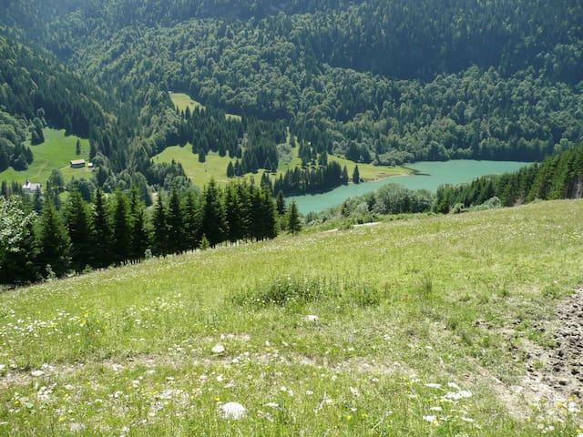 Le Lac de Vallon à Bellevaux